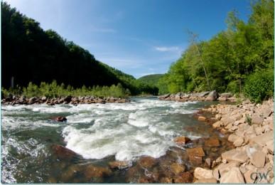 Cheat River